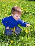 De jongen zit op paardebloem;. Royalty-vrije Stock Foto