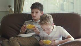De jongens eten graan stock video