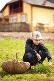 De jongens scherp gras van het land voor dieren stock afbeelding