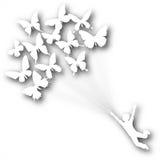 De jongensknipsel van de vlinder Royalty-vrije Stock Afbeeldingen