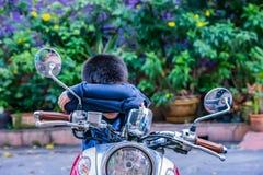 De de jongenszitting en slaap op de motorfiets royalty-vrije stock foto