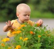 De Baby van het geluk Royalty-vrije Stock Afbeelding