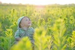 De jongenszitting van de gelukbaby op het gras op gebied Royalty-vrije Stock Afbeelding