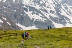 De jongeren wandelt in hooglanden van Altai-bergen, Rusland Royalty-vrije Stock Afbeeldingen