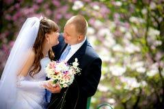 De jonggehuwden Stock Foto's