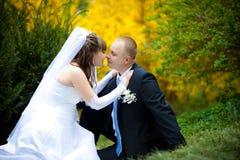 De jonggehuwden Royalty-vrije Stock Fotografie