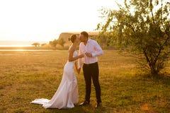 De jonggehuwden in hun huwelijk kleedt het drinken champagne en kissin stock foto's