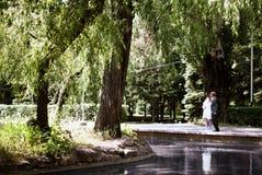 De jonggehuwden lopen in het park Royalty-vrije Stock Foto