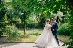 De jonggehuwden lopen onder de groene bomen in het park De bruid in een sneeuwwitte weelderige kleding en met zacht roze royalty-vrije stock fotografie