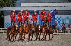 25 de julho de 2015 Apresentação cerimonial da escola de equitação do Kremlin em VDNH em Moscou Fotos de Stock Royalty Free