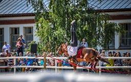 25 de julho de 2015 Apresentação cerimonial da escola de equitação do Kremlin em VDNH em Moscou Imagem de Stock