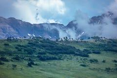 14 de julio de 2016 - cabaña de madera con las montañas y los árboles verdes - San Juan Mountains, Colorado, los E.E.U.U. Imagen de archivo libre de regalías