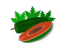 De köttpapayafrukterna och sidorna vektor illustrationer
