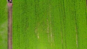 de 4k tiro aéreo de la versión ultra HD de campos con los diversos tipos de agricultura California que cultiva en costa oeste her almacen de metraje de vídeo