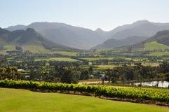 De kaap Zuid-Afrika van Franschhoek winelands Stock Foto's