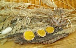 De kaarsen van de bijenwas Stock Afbeelding