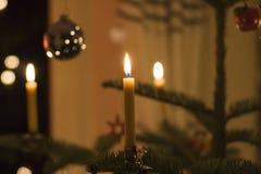 De kaarsen van de bijenwas op een Kerstmisboom Royalty-vrije Stock Afbeeldingen