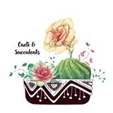 De kaart met cactussen en succulents plaatste Installaties van woestijn stock illustratie