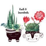 De kaart met cactussen en succulents plaatste Installaties van woestijn vector illustratie