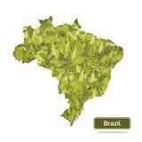 De kaart van Brazilië op witte achtergrond wordt geïsoleerd, verlaat kaartvector die Stock Foto's