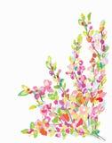 De kaart van de bloemgrens voor groetkaart - getrokken hand Stock Foto's