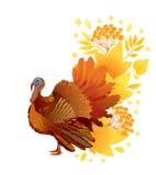 De kaart van de dankzegging met Turkije Stock Foto