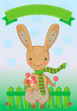 De kaart van de de lentegroet met een konijn die een madeliefje houden Stock Fotografie