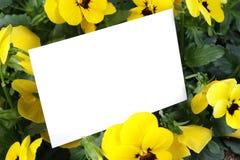 De kaart van de gift en gele bloemen Stock Fotografie