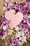 De kaart van de groet met lilac bloemen Royalty-vrije Stock Foto