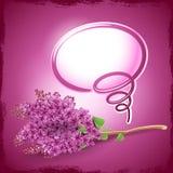 De kaart van de groet met lilac bloemen Stock Afbeelding