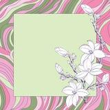 De kaart van de groet met roze magnolia Stock Afbeeldingen