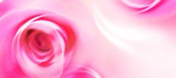 De Kaart van de Groet van de liefde - St Valentijnskaart - Bloemen - Rozen Stock Foto's