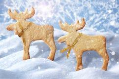 De Kaart van de Kerstmisgroet. Het vrolijke Kerstmis van letters voorzien als christma Royalty-vrije Stock Fotografie