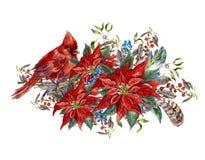 De kaart van de Kerstmisgroet met poinsettia en vogel stock illustratie