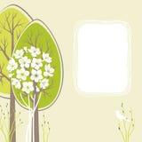 De kaart van de lente Stock Fotografie