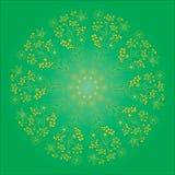 De kaart van de ornamentkleur met mandala Stock Afbeeldingen