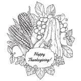 De kaart van de thanksgiving daygroet met bessen, groenten en vruchten Stock Foto's