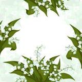 De kaart van de groet Kader met Lilly van de vallei - Mei-klokken, Convallaria-majalis met groene bladeren vector illustratie