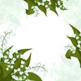 De kaart van de groet Lilly van de vallei - Mei-klokken, Convallaria-majalis met groene bladeren op een witte achtergrond royalty-vrije illustratie