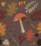 De kaart van de herfst Met extra formaat Vector illustratie Royalty-vrije Stock Afbeeldingen