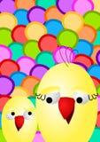 De Kaart van Pasen van de kip en van het Kuiken Stock Foto's