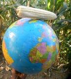 De kaart van de wereldbol met maïskolf op bovenkant Royalty-vrije Stock Afbeeldingen