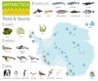De kaart van de zuidpool, van Antarctica, van de flora en van de fauna, vlakke elementen Anim stock illustratie
