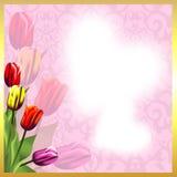 De kaart voor de Dag van de Valentijnskaart Beeld van liefde Tulpen Royalty-vrije Stock Foto