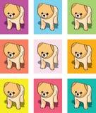De kaarten of de vectoren van het puppy royalty-vrije illustratie
