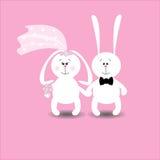 De kaartkonijnen van het huwelijk Stock Foto's