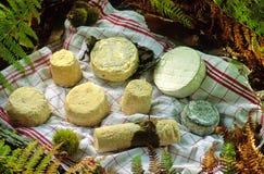 De kaas van de geit stock afbeelding