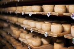 De kaas van de melk op planken Stock Foto's