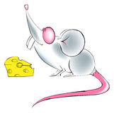 De kaas van de rat Stock Fotografie