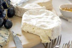 De kaas van de schimmel stock afbeelding